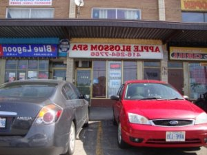 Assiyah adult dating in Beach Park